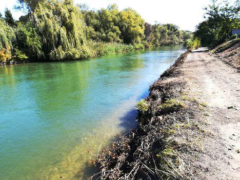Mosoni-Duna folyó, Mosonban a Rév utca Csikusz melletti részén, Mosonmagyaróvár 2018. szeptember 29.-én 2