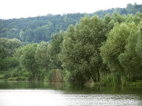 Halastó, Kaposvár felé. 2