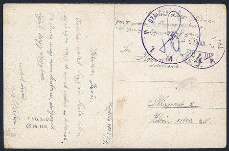 1919-es lap