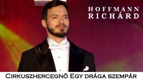 Hoffmann Richárd - Mister X főszerepében