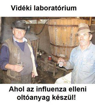 Magyar influenza oltóanyag gyártása