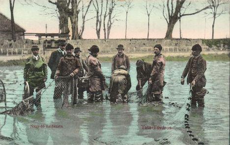 tatai tó halászat