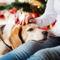 Aranyosi Ervin: Állandóan karácsony