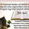 Biblia üzenet 1