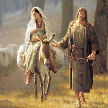 Mária József