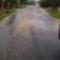 Murva az úton
