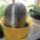 Viragzo_kaktuszom___3__bimboval_286147_99787_t