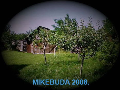 MIKEBUDA 1