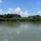 Duna folyam főmeder Rajka térségében, 2016. augusztus 28.-án 3