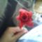 Saját kis virág ( egyedi )