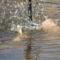 farokúszó fürdetés ))))