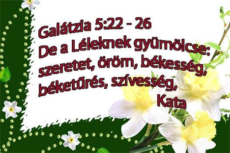 iGÉSKÉPEIM 6