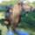 Scuba_diving_horse_294268_17956_t
