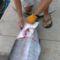 tengeri horgászat 1