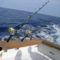 tengeri horgászat 7