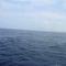 tengeri horgászat 9