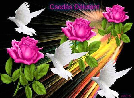 Nagyon szép délutánt kívánok mindenkinek .