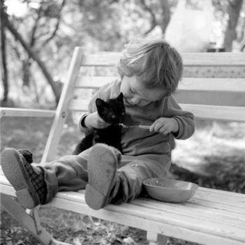 Aranyosi Ervin: Szeretettel megetetlek
