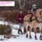 3-yr-old-Julia-and-Sonny-bringing-home-the-Christmas-tree