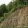 Sárvári Gyuláné -  Vegyes képek