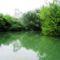 Sebes csatorna Szigetközi hullámtéri vízpótlórendszerben, Kisbodak 2016. július 14.-én 8