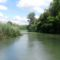 Szürke-Duna a Lipót-Ásványi mellékágrendszerben, Lipót 2016. július 13.-án 3