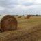 Befejeződött a gabona aratása, Lipót 2016. július 17.-én