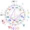 coelho horoszkópja