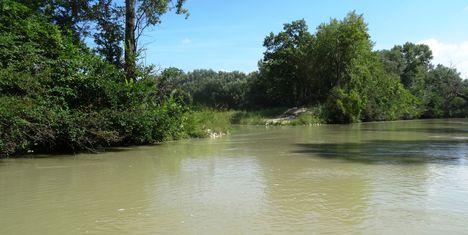 Mosoni-Duna Feketeerdei Libafarmi holtág új vízpóló ága, Feketeerdő, 2016. július 17.-én 1