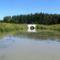 Mosoni-Duna Feketeerdei Libafarmi holtág új vízpóló ága, Feketeerdő, 2016. július 17.-én 3