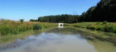 Mosoni-Duna Feketeerdei Libafarmi holtág új vízpóló ága, Feketeerdő, 2016. július 17.-én 4