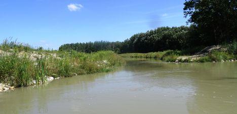 Mosoni-Duna Feketeerdei Libafarmi holtág új vízpóló ága, Feketeerdő, 2016. július 17.-én 5