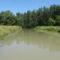 Mosoni-Duna Feketeerdei Libafarmi holtág új vízpóló ága, Feketeerdő, 2016. július 17.-én 7