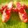 Eredeti szegedi kézzel varrott papucs (Rátkai Sándor népművészet mesterétől kitanult módon készítve)