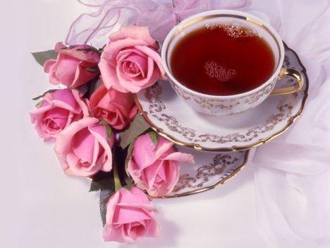 CAFFE (tea?)-RÓZSÁVAL