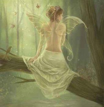 angyal az ágon
