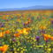 Virágmezők (6)