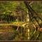 őszi képek6