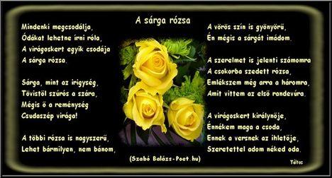 sárga rózsak