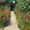 Virágoskertem