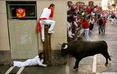 Pamplona-bikafuttatás