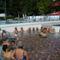 2009. július 11-én Leányfalun strandoltunk unokáinkkal a Baba-mama nap keretén belül 6