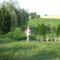 Anyósom kertje Küngösön 11