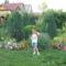 Anyósom kertje Küngösön 9
