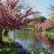Virágzó fák 6