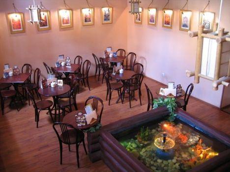 vörös oroszlán teaház villányi 11