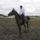 én és lovaim