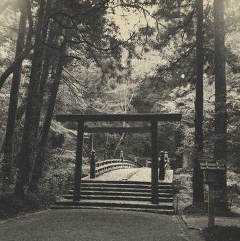 The Great Torii and Main Bridge