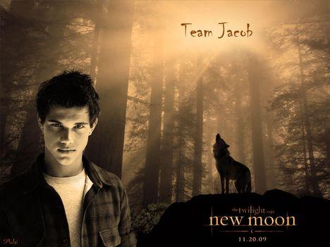 Jacob-new-moon-7066897-1024-768