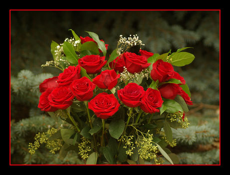 Gyönyörű szép rózsacsokor!